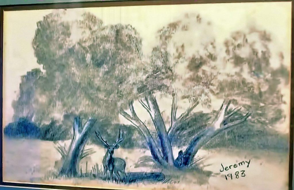Jeremy Wade Delle deer landscape drawing 1983